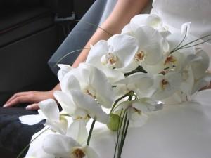 на свадьбу букет из орхидей